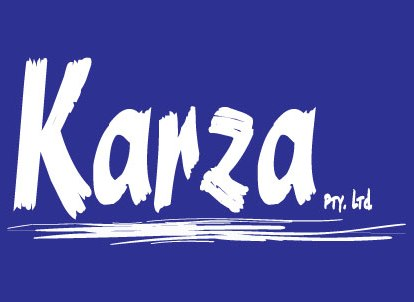 Karza audit services